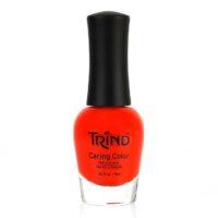 TRIND CC270 Pumpkin Spice